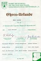 Stevan Rakić's diploma for​viola in the Mittenwald Germany competition